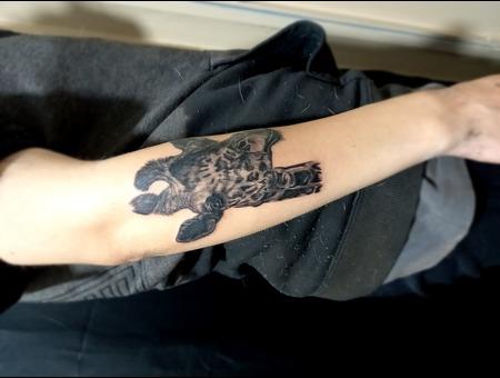 Giraffe Tattoo  Black N Grey  Realistic  Black Grey Arm