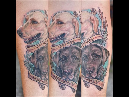 Dogs   Portraits  Pets   Family   Dog   Dog Dad   Color Forearm