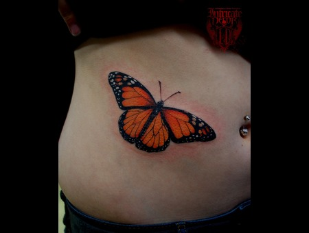Butterfly  Monarch Color Ribs
