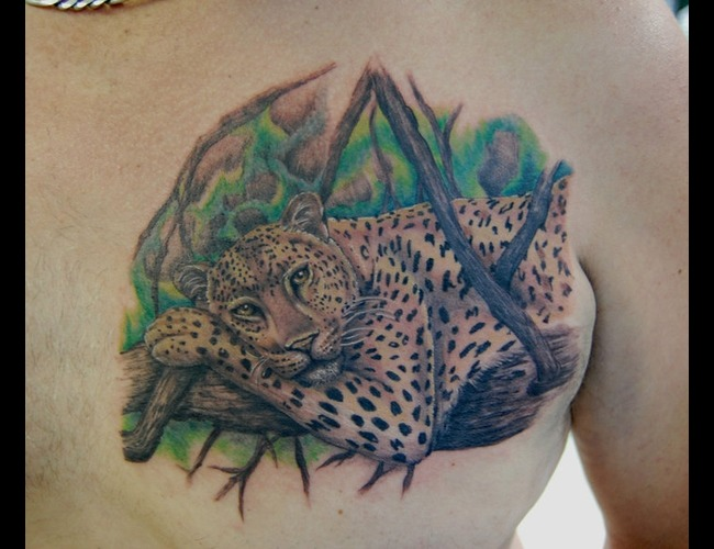 Leopard Color Chest
