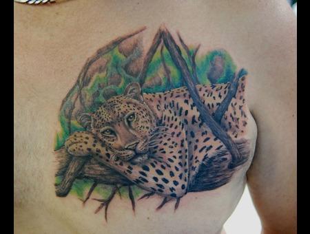 Leopard Color Chest
