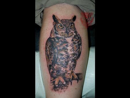 Owl  Calf Color Lower Leg