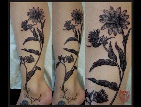 Flowers  Botanical  Linework Black White Lower Leg