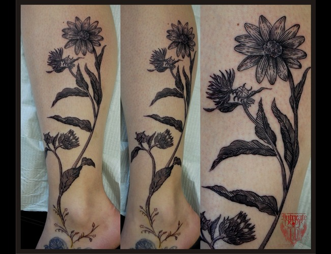 Flowers  Botanical  Linework Black White Lower Leg