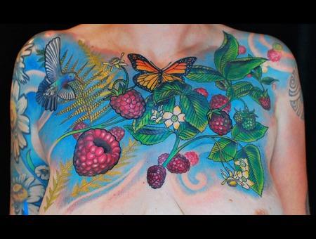 Organic  Nature  Hummingbird Color
