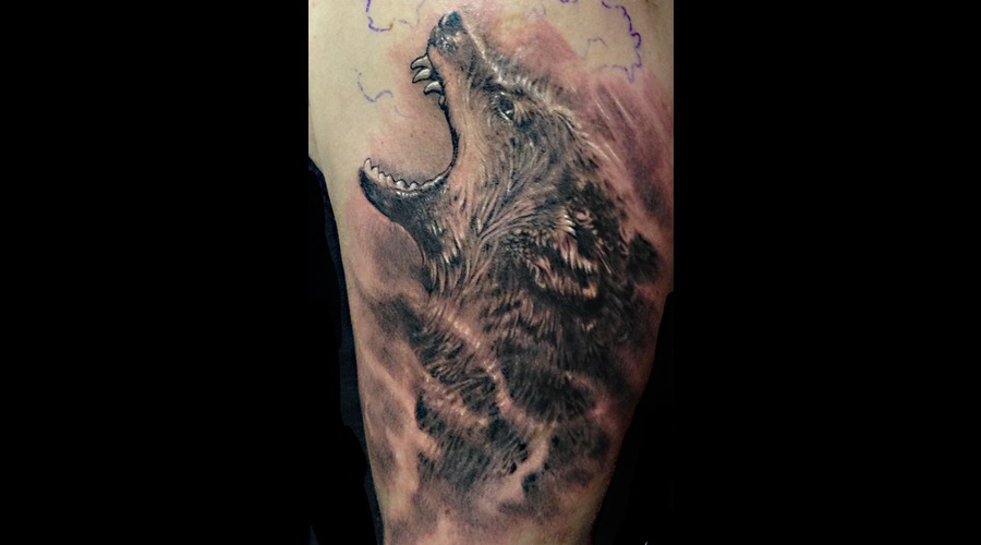 Wolf  Animals Black And Grey  Portrait  Realism  Realistic  Fine Line   Black Grey