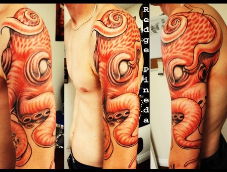 Octopus Color