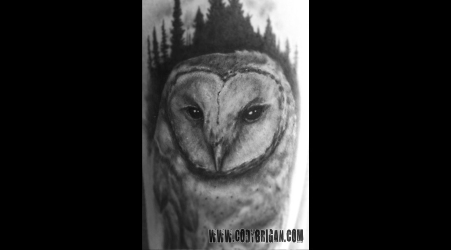 Barn Owl Black White