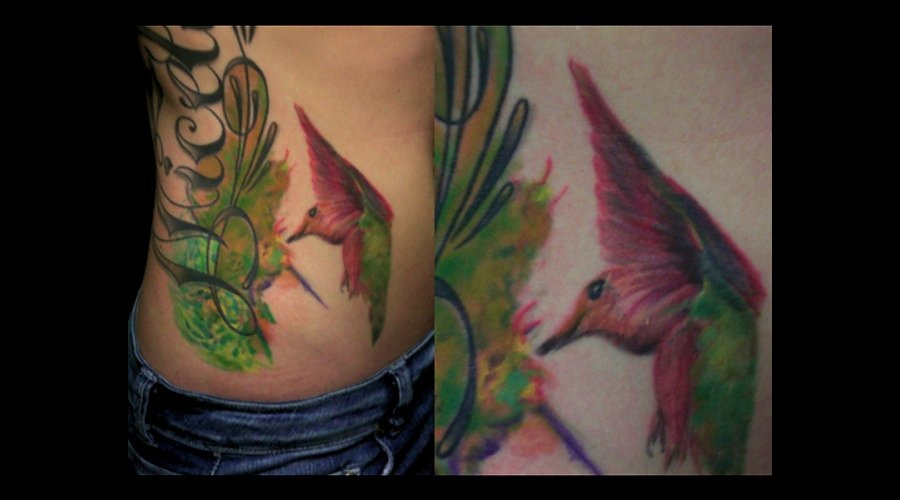 Hummingbird Nature Photorealism  Colorful  Flower Color