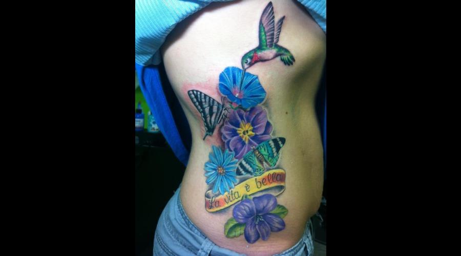 Hummingbird  Flowers  Butterfly  Butterflies Color