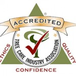Logo of the Tree Care Industry Association