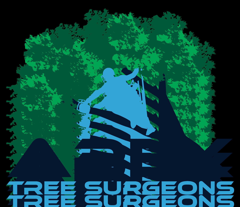 Apex Tree Surgeons Pty Ltd Reviews Customer Service Reviews Of Apex Tree Surgeons Pty Ltd Http Www Apextreesurgeons Com Au