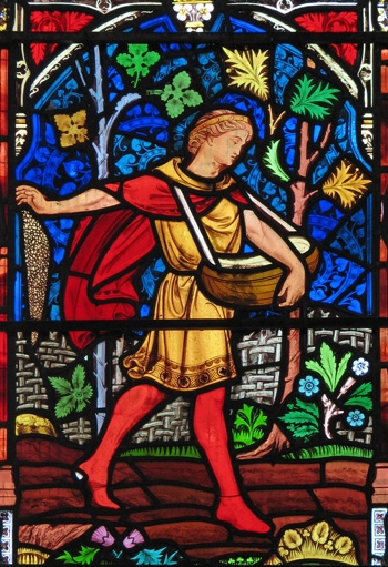 Parable of the Sower—Ely Cathedral