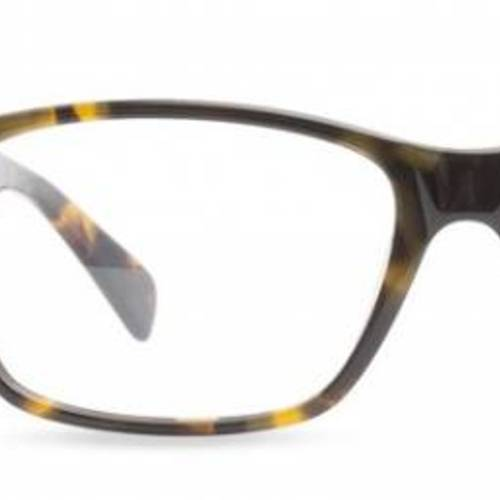 tryspree free pair of glasses from coastal