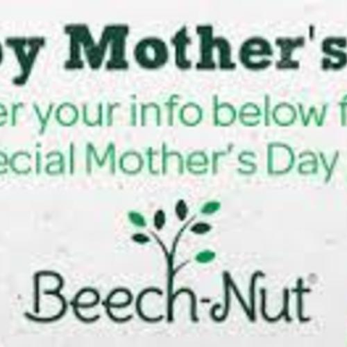 beech nut nutrition corporation essay Beech-nut nutrition company produces and supplies foods for babies the  company offers cereals and solid foods for four, six, eight, and twelve months  babies.