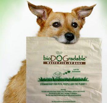 Free-biodogradable-dog-waste-bags-sample