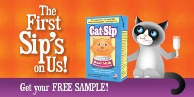 Free-cat-sip-real-milk-treat