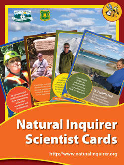 Free Scientist Cards