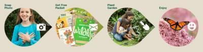 Free-garden-kit-butterfly-heroes