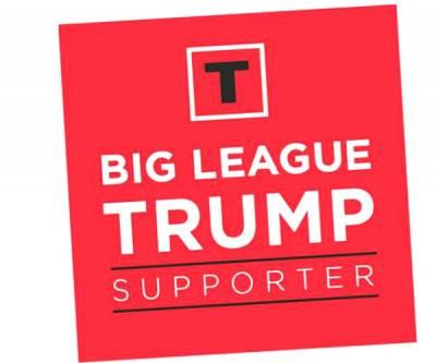 Free Big League Trump Supporter Sticker