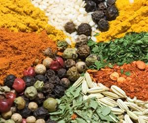 Free Herbs & Spices Samples