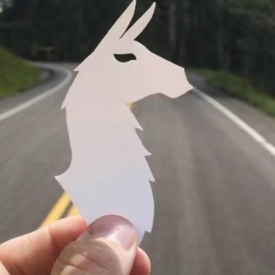 free llama sticker