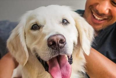 Dog Food - Free Sample - Naked Essentials