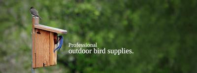 Free Bird's Choice Catalog