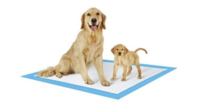 Free PetsWorld Training Pads Samples