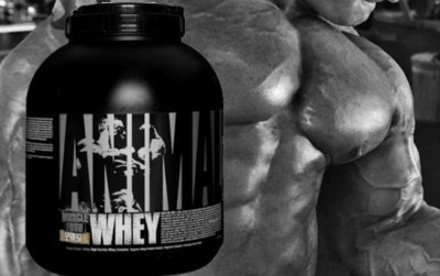 Free Sample of Universal Nutrition Whey Protein