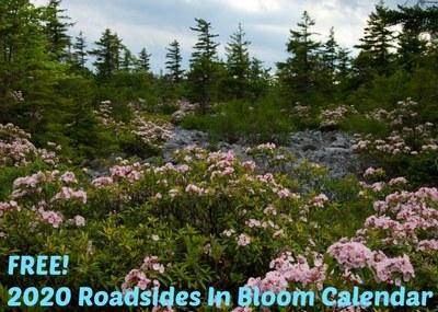 2020 Roadsides in Bloom Calendar for Free