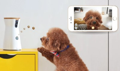 Furbo Dog Camera for Healthcare Workers for Free