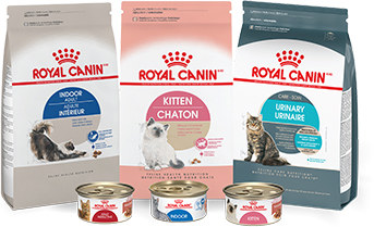 Free Royal Canin Hematuria Detection technology by Blücare - Sweepstakes