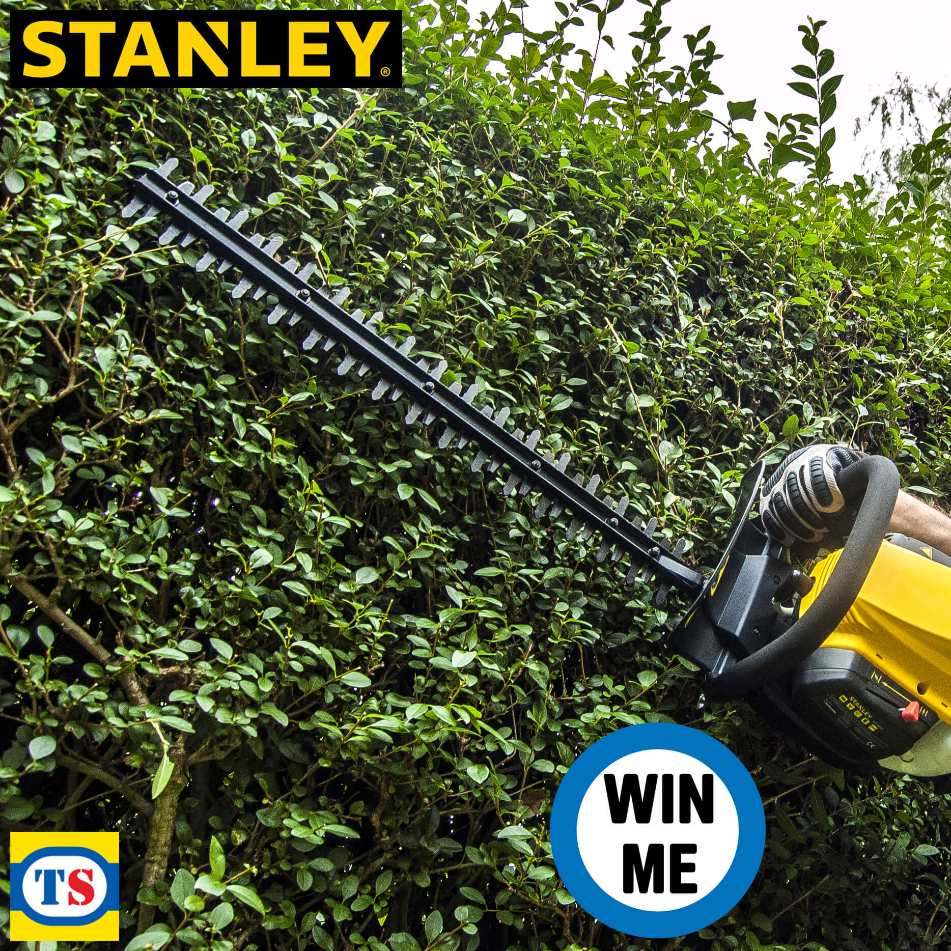 Social Competition - Stanley Hedge Trimmer Terms & Conditions