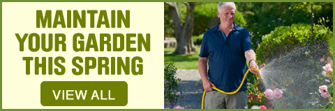 Maintain your Garden. View all