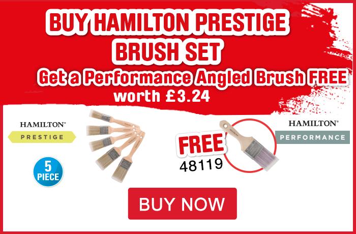Buy Hamilton prestige brush set get a performance angled brush free. View All