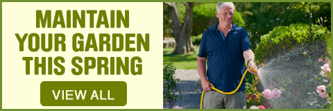 Maintain your garden - View All