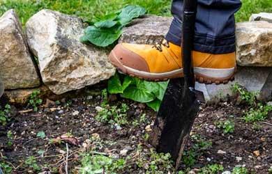 Yellow boot pushing spade into some soil