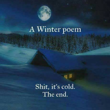 A Winter Poem: Shit it's cold. The End. (Text over an image of a house in the midst of winter at night with the moon overhead and light coming from the windows)