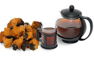 Drink Chaga Tea for Immune Support