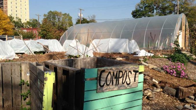 Philadelphia Urban Creators gears up for the winter by implementing high tunnels in the garden to lengthen the growing season of crops. | LAUREN HERTZLER / TTN