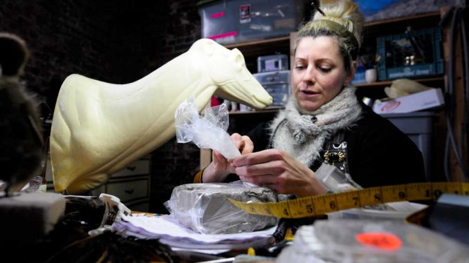 "Taxidermist Beth Beverly works on her projects in a studio space in Philadelphia. Previous to owning the space, she worked out of her house, once skinning a goat in her bathtub. Beverly is now on the AMC show, ""Immortalized."" 