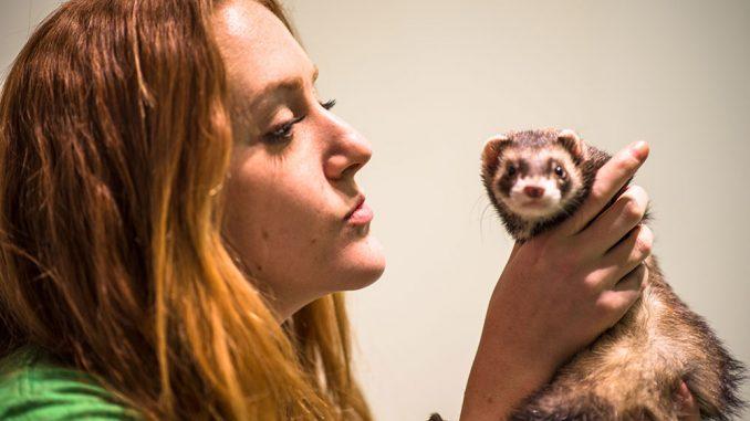 Rachel Black started Temple Animal Welfare. | Eric Dao TTN
