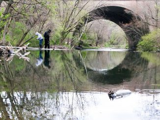 The Center for Sustainable Communities will research sections of the Delaware River watershed, including this area of Pennypack Creek in Philadelphia. | Sergei Blair TTN