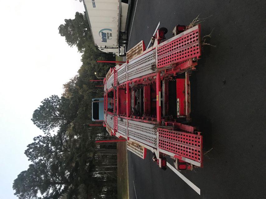 used 2013 cottrell car carrier hauler trailer in tallahassee fl. Black Bedroom Furniture Sets. Home Design Ideas