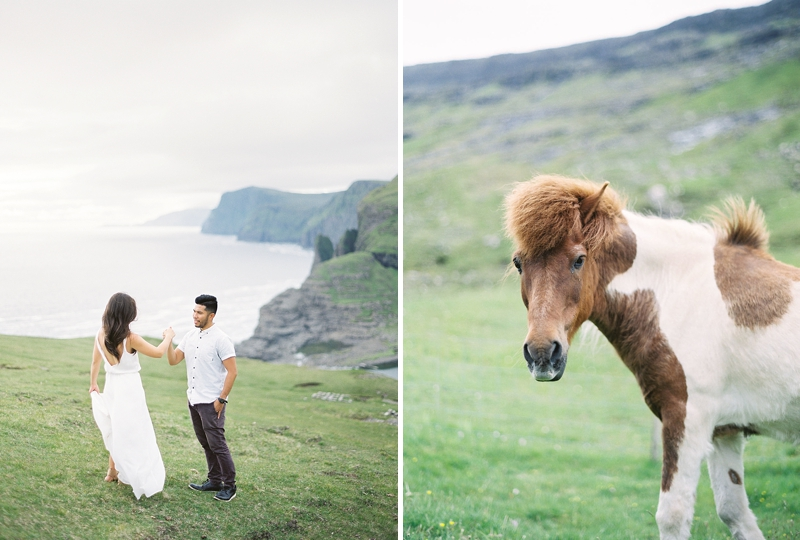 Anniversary vacation in the Faroe Islands Denmark with Shetland pony