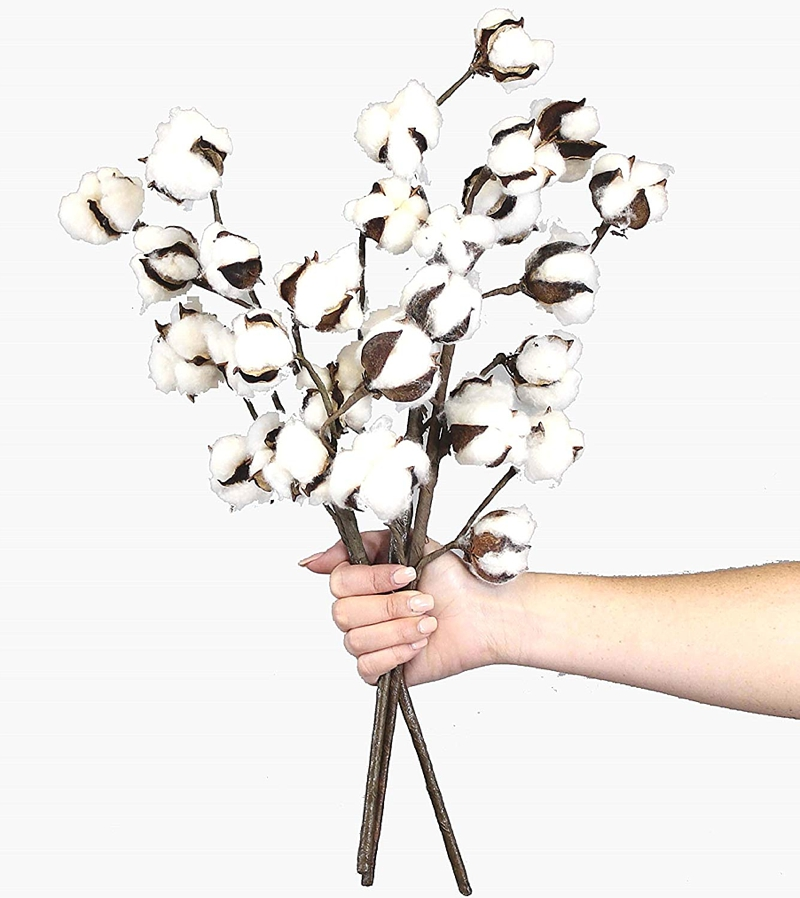Cotton stems that are perfect for rustic wedding bouquets