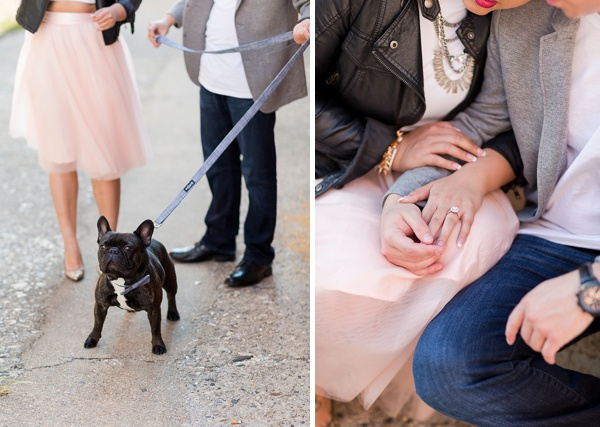 French bulldog at an engagement session