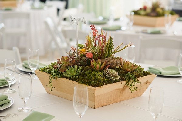 Beautiful diverse succulent wedding centerpieces with mini cactus and table number sticks