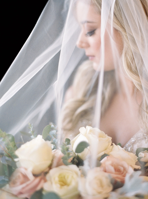 Gorgeous bridal portrait with classic veil